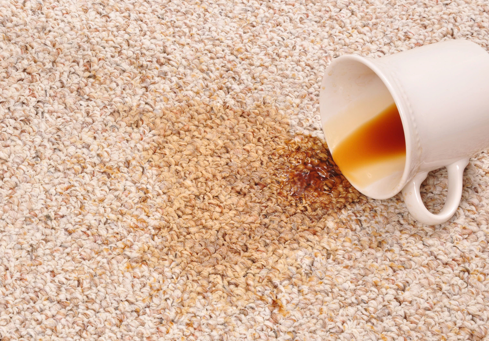 Signs It's Time To Replace Your Carpet