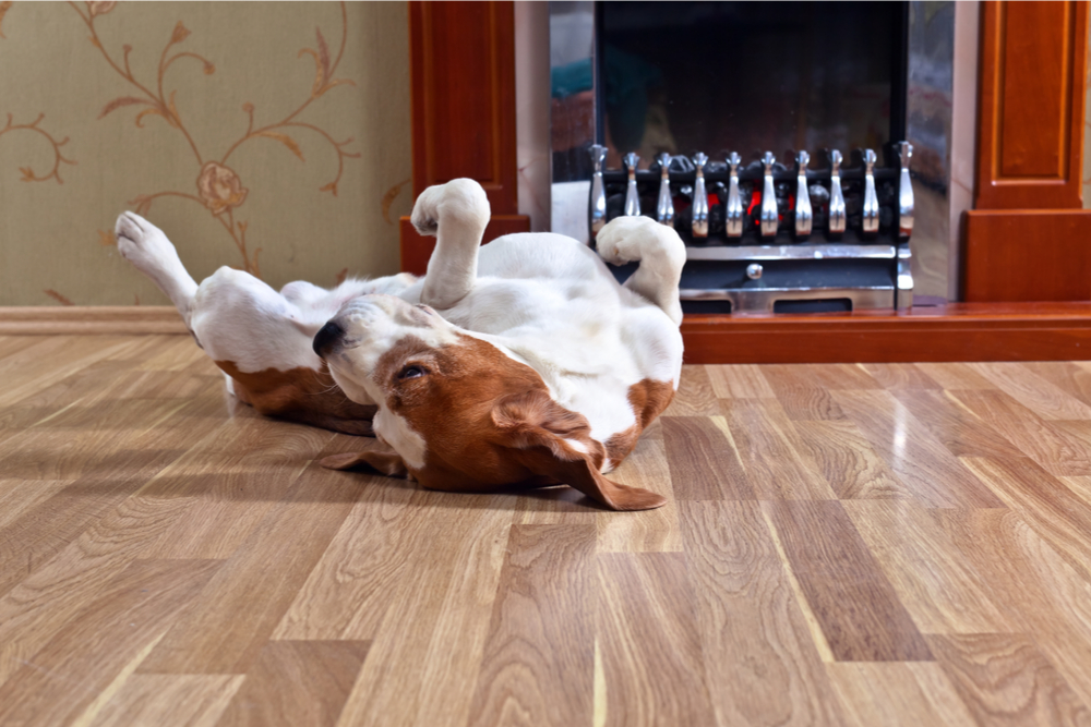The Differences Between Laminate And Vinyl Flooring